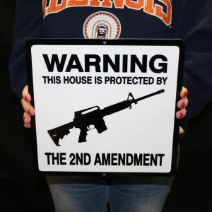 2ND AMENDMENT WARNING RIFLE 12