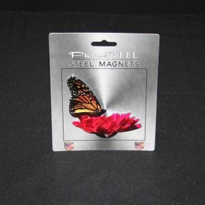MAGNET MONARCH ON FLOWER